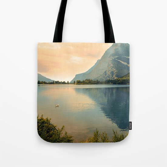 Autumn Glance Tote Bag