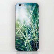 Angel Grass iPhone & iPod Skin