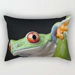 The Frog Says Boo Rectangular Pillow