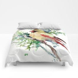 Cardinal Bird Artwork, female cardinal bird Comforters