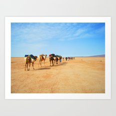 {camel train} Art Print