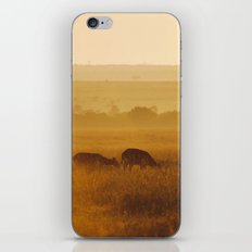 Safari Sun iPhone & iPod Skin