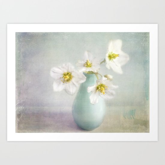 lovely Helleborus Art Print
