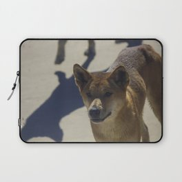 Dingo on Fraser island Laptop Sleeve