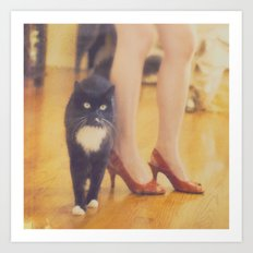 Catwalk. black tuxedo cat photograph Art Print