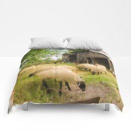 Little Sheep Comforters