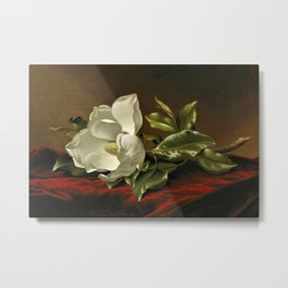 """Magnolia Grandiflora,"" 1885 by Martin Johnson Heade Metal Print"