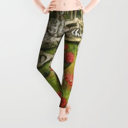 Looking Glass Leggings