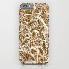 Cornfield iPhone 6s Slim Case