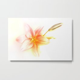 Pink and Yellow Tiger Lily - Dreamy Floral Photography - Flower Art Prints, T-shirts, Phone Cases... Metal Print