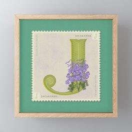 Sellos Naturales. Letter J. Flower: Jacaranda Framed Mini Art Print