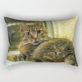 Toby Rectangular Pillow
