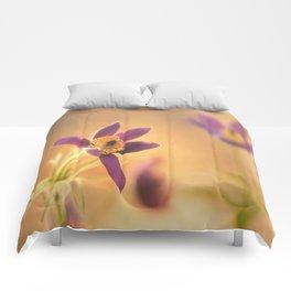 Fine Flower in Detail  Comforters