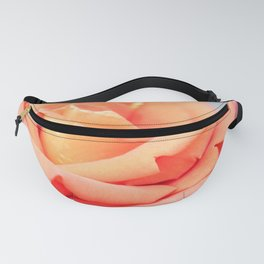 Salmon colored rose in bloom Fanny Pack