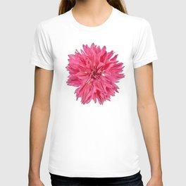Pink Cornflower T-shirt
