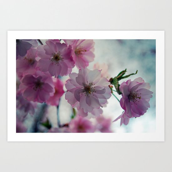This is why I love spring ( Spring  Blossom) Art Print