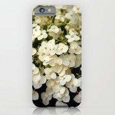 Tiny White Hydrangeas (In Color) iPhone 6s Slim Case