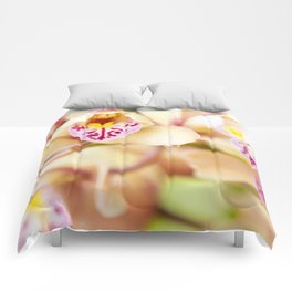 Pink and yellow orchids Comforters