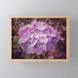 Pink Framed Mini Art Print