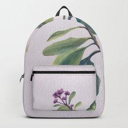 Saturday Morning Sedum Backpack