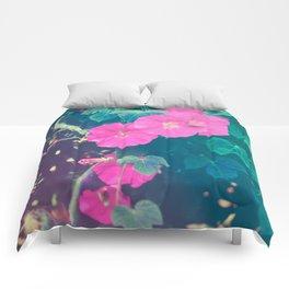 The Mirror is Pink Comforters