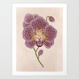 Wild Orchid Art Print