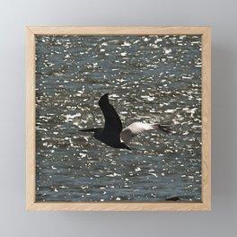 Pelican Flying Over Shimmering Lake Bafa Framed Mini Art Print