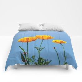 Poppy Daydream Comforters