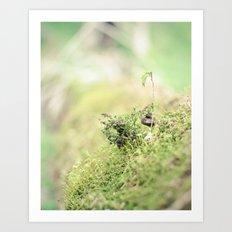 Little green world Art Print