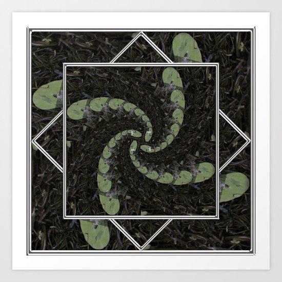 Spiralling Water Lilies Art Print
