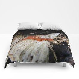 Red Newt Comforters