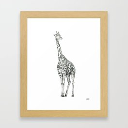 Giraffe Biro Drawing Framed Art Print
