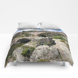 Viaducts Comforters