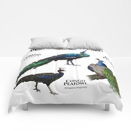 Peafowl of the World Comforters
