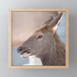 Watercolor Elk Cow 11 Framed Mini Art Print