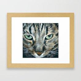 Brown Tabby Cat Framed Art Print