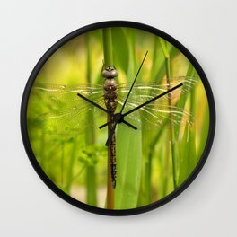 Dragonfly In The Reeds... Wall Clock