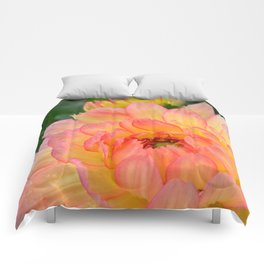 """""""Coral Tipped"""" Dahlia by Teresa Thompson Comforters"""