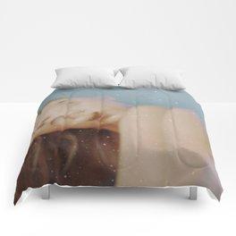 Gray as Snow Comforters