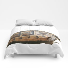 Sideview of A Walking Turkish Tortoise Isolated Comforters