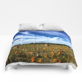 Pumpkin season is here Comforters