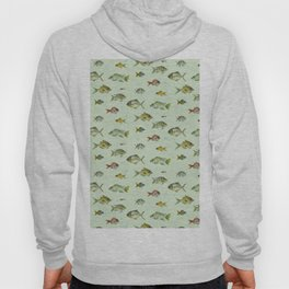 Colourful Fishies Hoody