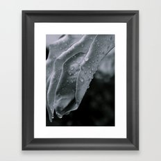Raindrops. Framed Art Print