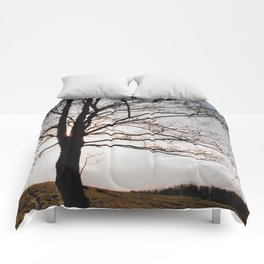 Cold autumn Comforters