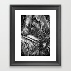webs Framed Art Print