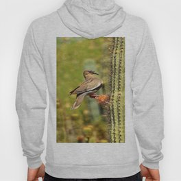 Perching On A Saguaro Cactus Hoody