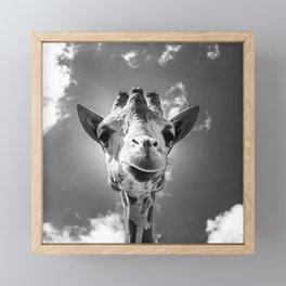 Cool Giraffe Black and White Framed Mini Art Print