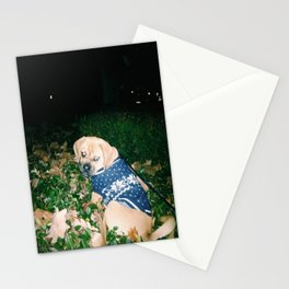 Hank making love to the night Stationery Cards