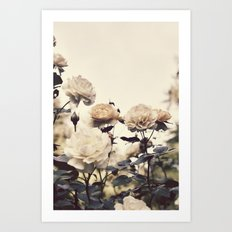 Yellow Rose Garden Art Print