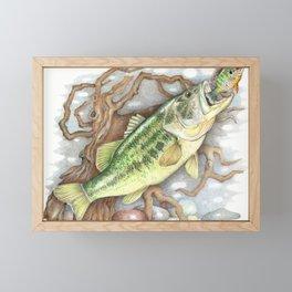 Bass and Pumpkin Seed Framed Mini Art Print